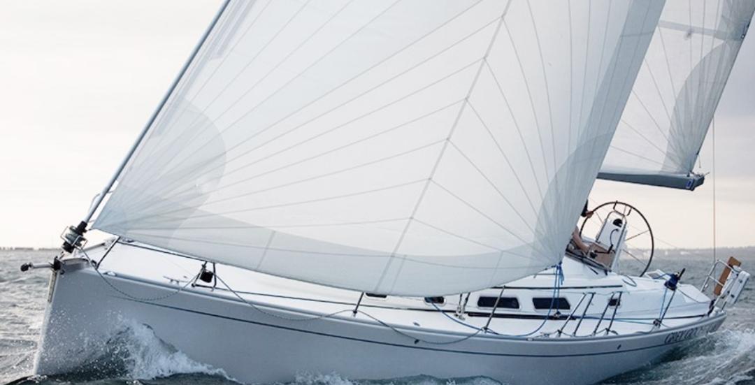 Cdx Pro Polyester Cruising Laminates